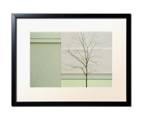 green city par antoine tatin Découvrez la sélection des photographes mabellephoto de janvier