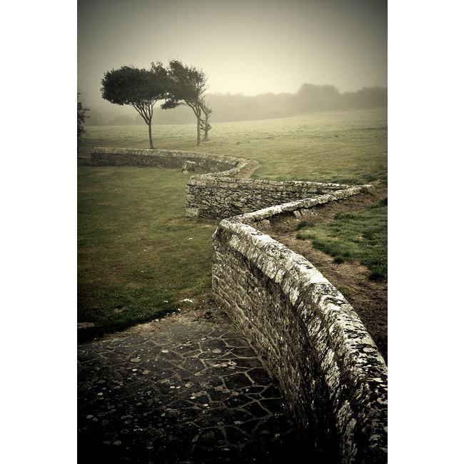 ste anne la palud nature paysages par pascal autret Découvrez la sélection des photographes mabellephoto du mois d'août